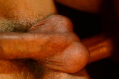 gbs0015-growlboys-gay_furry_porn_pup_play_transformation-pic07